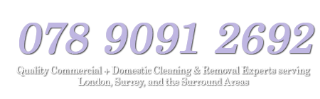 Surrey Cleaning Company